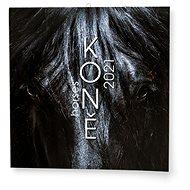 BALOUŠEK- Koně                    - Nástěnný kalendář