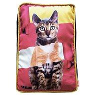 LES FILOUS IT ROCKS Pillow for Cats 50 × 35 × 10cm - Bed