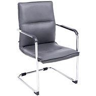 BHM Germany Hudson s područkami, syntetická kůže, šedá - Konferenční židle