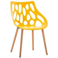 Dining chair Berry yellow - Dining Chair
