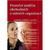 Finanční analýza obchodních a státních organizací - Elektronická kniha