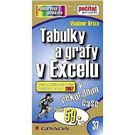 Tabulky a grafy v Excelu - Elektronická kniha