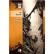 Město čarodějů - Elektronická kniha