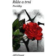 Růže a trní: Povídky - Elektronická kniha