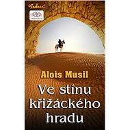 Ve stínu křižáckého hradu - Elektronická kniha