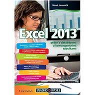 Excel 2013 - Elektronická kniha