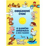 O sluníčku, zvířátkách a noci tajemné - Elektronická kniha