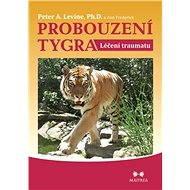 Probouzení tygra - Elektronická kniha