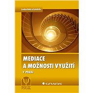 Mediace a možnosti využití - Elektronická kniha
