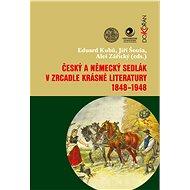 Český a německý sedlák v zrcadle krásné literatury 1848-1948 - Elektronická kniha