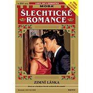 Zimní láska - Elektronická kniha
