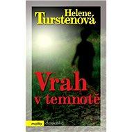 Vrah v temnotě - Elektronická kniha