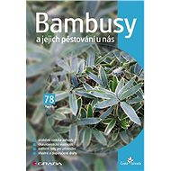 Bambusy a jejich pěstování u nás - Elektronická kniha