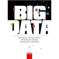 Big Data - Viktor Mayer-Schönberger, Kenneth Cukier