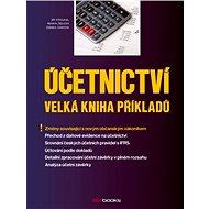Účetnictví – Velká kniha příkladů - Elektronická kniha