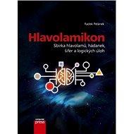 Hlavolamikon - Elektronická kniha