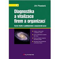 Diagnostika a vitalizace firem a organizací - Elektronická kniha