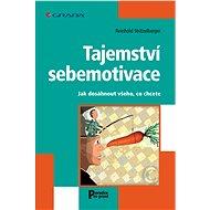 Tajemství sebemotivace - Elektronická kniha