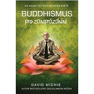 Buddhismus pro zaneprázdněné - Elektronická kniha