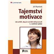 Tajemství motivace - Elektronická kniha
