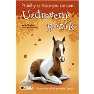 Příběhy se šťastným koncem – Uzdravený poník - Sarah Hawkins