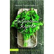 Zatracené kyselo - Elektronická kniha