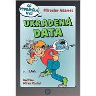 Ukradená data - Elektronická kniha