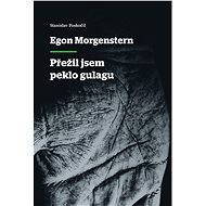 Egon Morgenstern - Přežil jsem peklo gulagu - Elektronická kniha