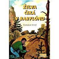 Želva čeká v Babylónu - Elektronická kniha -  Svatopluk Hrnčíř