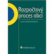 Rozpočtový proces obcí - Elektronická kniha