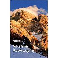 Ve stínu Aconcaguy - Elektronická kniha
