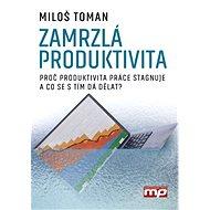 Zamrzlá produktivita - Elektronická kniha