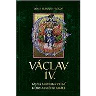 Václav VI. - Josef Bernard Prokop
