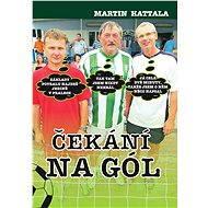 Čekání na gól - Elektronická kniha