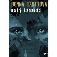 Malý kamarád - Donna Tarttová, 560 stran