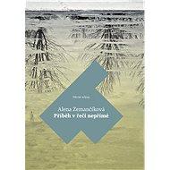 Příběh v řeči nepřímé - Elektronická kniha