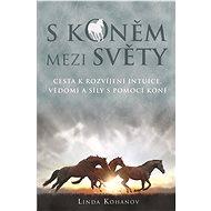 S koněm mezi světy - Elektronická kniha -  Linda Kohanov