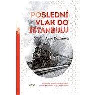 Poslední vlak do Istanbulu - Elektronická kniha