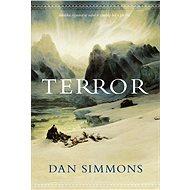 Terror - Elektronická kniha