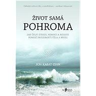 Život samá pohroma - Elektronická kniha
