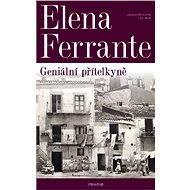 Geniální přítelkyně - Elektronická kniha