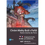 Chrám Matky Boží v Paříži A1/A2 - Elektronická kniha