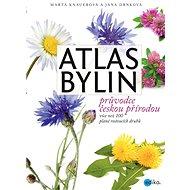 Atlas bylin - Elektronická kniha