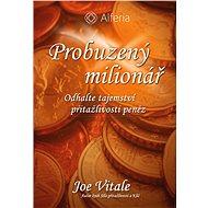 Probuzený milionář - Elektronická kniha