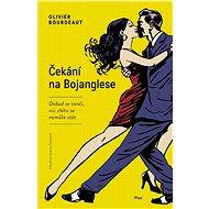 Čekání na Bojanglese - Elektronická kniha