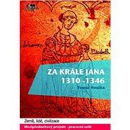Za krále Jana - Elektronická kniha