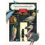 Příběhy z muzea. Tajemství kouzelného pírka - Elektronická kniha
