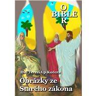 Obrázky ze Starého zákona - Elektronická kniha