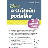 Zákon o státním podniku v praxi - Elektronická kniha