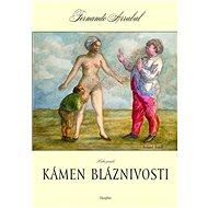 Kámen bláznivosti / Kniha panická - Elektronická kniha